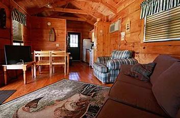 Cabin 55<