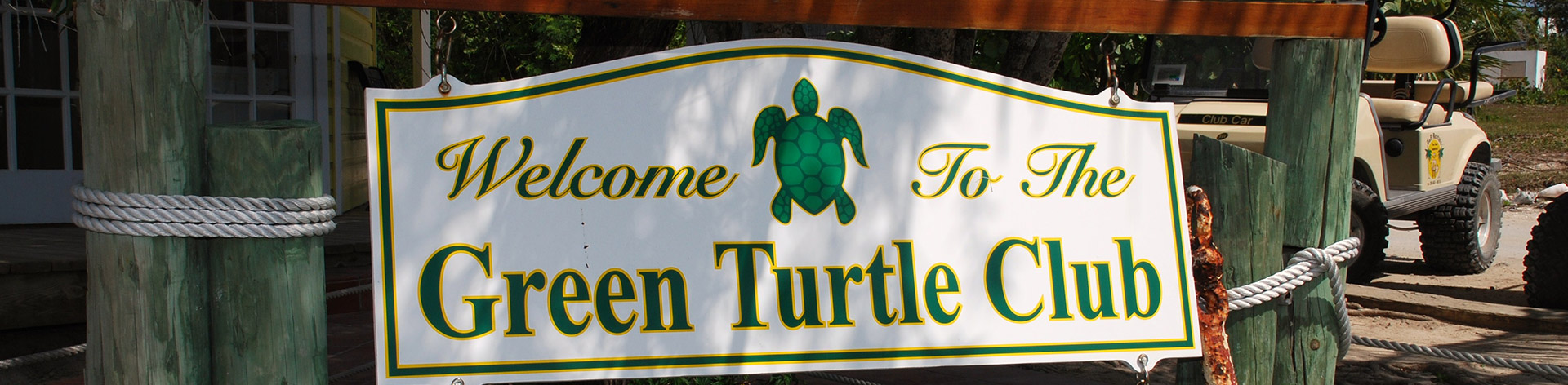 Green turtle coupons