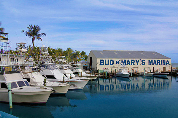 Boating Destinations In Florida At Guy Harvey Outpost Marina