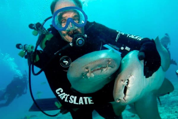 dive-outfitters