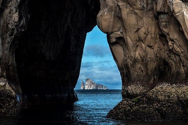 Galapagos Island Fish and Safari