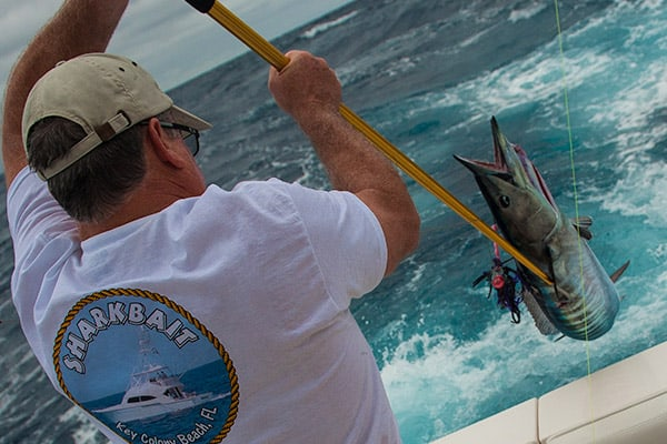 Freeport fishing guides tarpon fishing in grand bahama for Bahamas fishing license