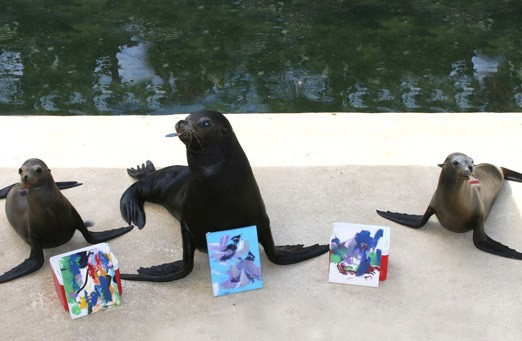 09-Paint-with-the-Sea-Lion-at-Theater-Of-the-Sea!