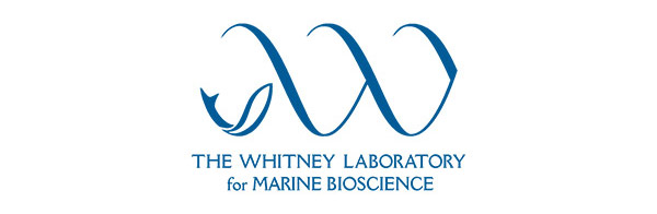 Whitney lab