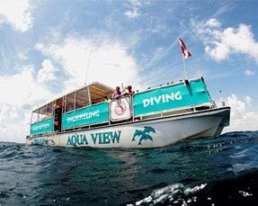 Snorkel & Dive Ft Lauderdale