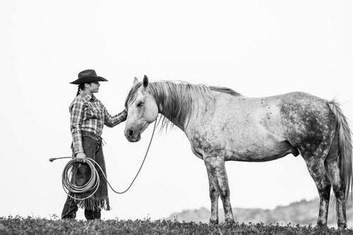 Photo Academy - Fast Horse Workshop